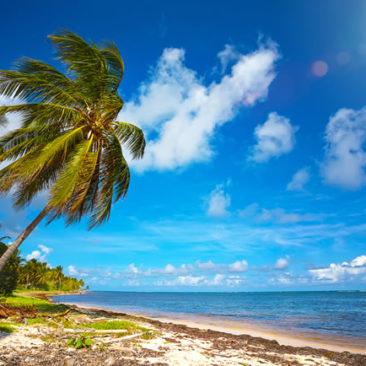 Jamaica – The No Problem Island! A Slice of Tropical Paradise