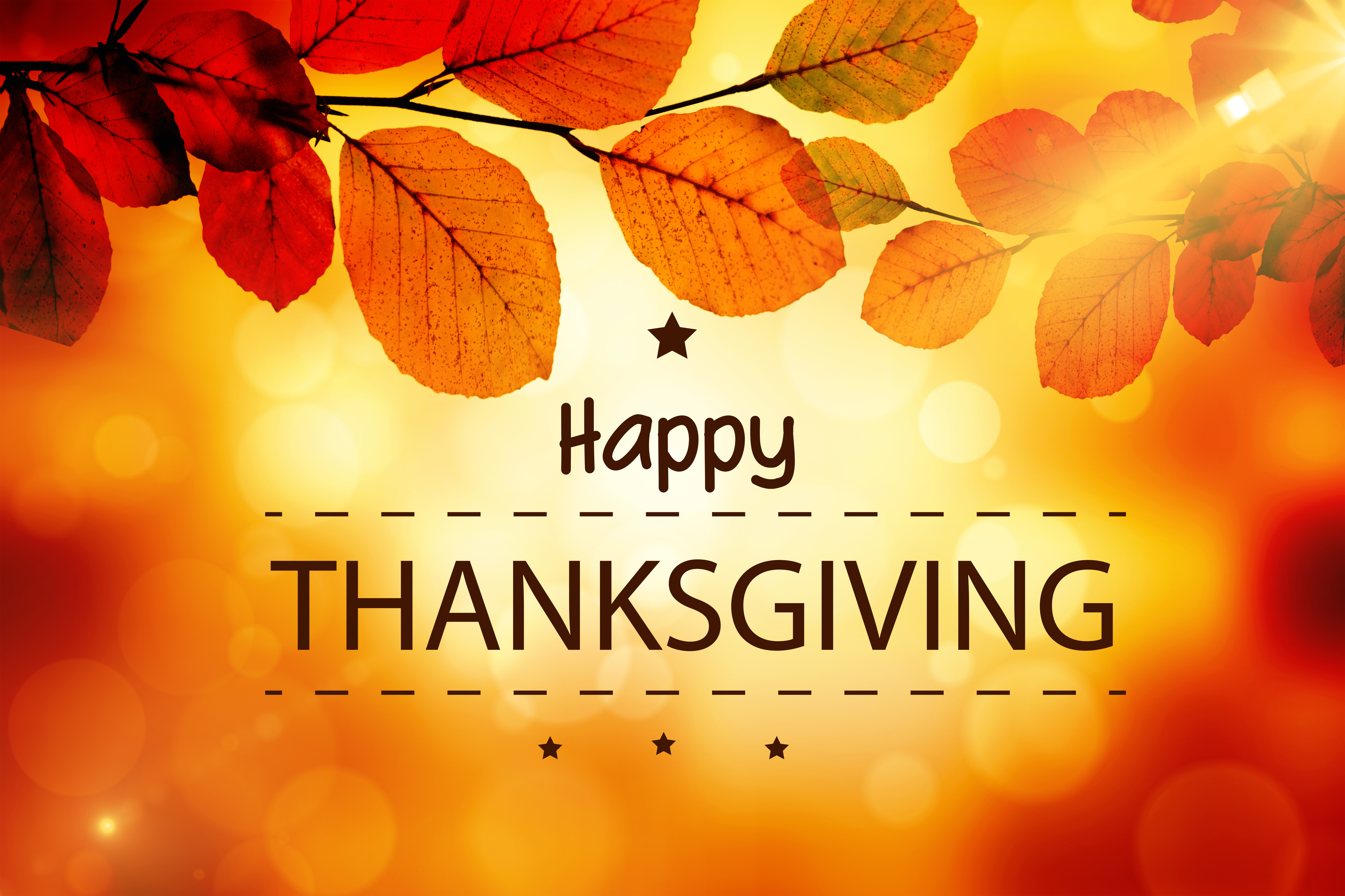 Were Thankful for You! — Deseret Book Blog