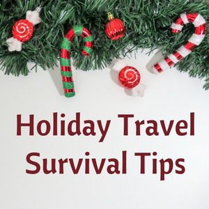 Home for the Holidays: Travel Edition